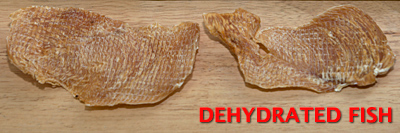 Dehydrated Fish Treats for Dogs